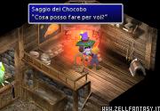 Il saggio dei Chocobo